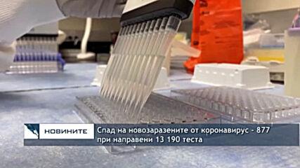 Спад на новозаразените от коронавирус - 877 при направени 13 190 теста