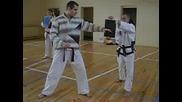 Семинар, Таекуондо, Итф, Taekwondo, Itf