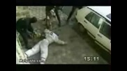 Кучета - Антитерористи