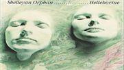 Shelleyan Orphan ☀️ Helleborine 1987