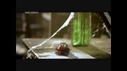 Hot! Alexander base feat. Mirella - Feelings (sabarou Remix)