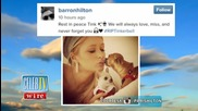 Paris Hilton's Iconic Dog Tinkerbell Passes Away