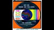 Една песен и 1001 изпълнения - Surfaris - Hey Joe