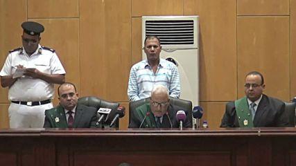 Egypt: Muslim Brotherhood's Badie handed life sentence
