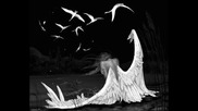 chujdo - moi angele balada - srb -