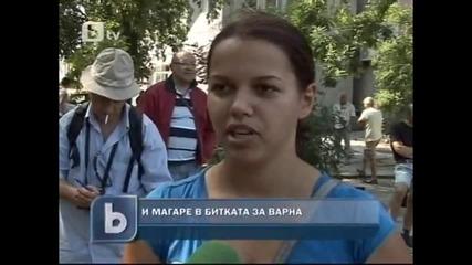 btv - Ентусиасти издигат магаре за кмет във Варна
