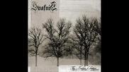 Svafnir - Shadows In The Water