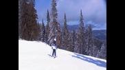 Зимна ваканция 2011 година