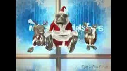 Весела Коледа На Всички !!!