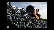 Български Занаяти III - Вино
