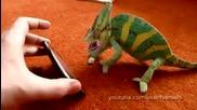 Хамелеон се стряска от смартфон