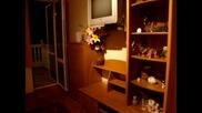 Apartment Toni