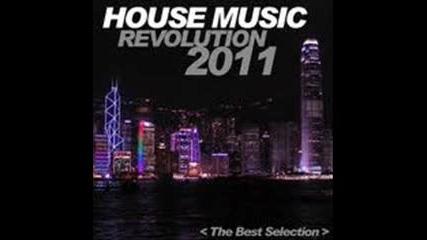 house music revulution 2011