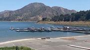USA: Naya Rivera's body recovered from Lake Piru after six day search