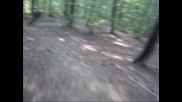 Downhill трасе в Троян (м.попешка)