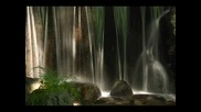 Fanopic — Красотата на Японското градинско парково изкуство видео 16377