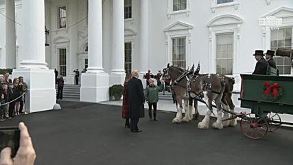 USA: Trump welcomes Christmas tree to White House