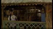 Черна Котка Бял Котарак Изписват Дядото От Болницата
