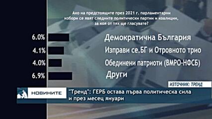 """""""Тренд"""": ГЕРБ остава първа политическа сила и през месец януари"""