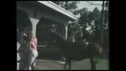 Хора И Бикове - Смешни Инциденти