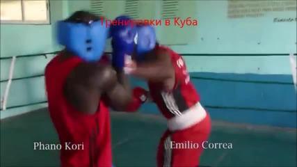 Тренировка по бокс в Куба