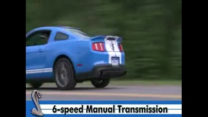 2010 Ford Mustang Shelby Gt500 T