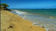 Relax - Maui Beaches - Nature Sounds -