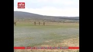 Очакват вълна от напускащи армията /07.11.2015 г./