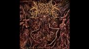 Visceral Disgorge - Skullfucking Neonatal Necrosis