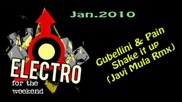 Gubellini & Pain feat. Darook Mc - Shake it up (javi Mula Rmx)