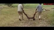 Сбогом, Африка (1966) - бг субтитри Част 3 - Документален филм