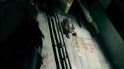 Sirenia - The End Of It All Video + Bg Lyrics
