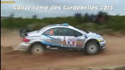Rallye Terre Des Cardabelles 2013