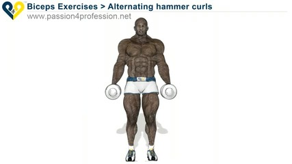 Alternating hammer curls (standing with dumbbells)