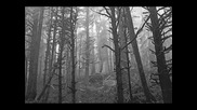 Agalloch - Our Fortress is Burning... I