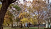 Есенна носталгия
