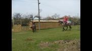 Конете от конна база Поповяне