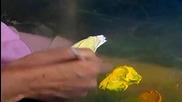 S10 Радостта на живописта с Bob Ross E05 - океански бриз ღобучение в рисуване, живописღ