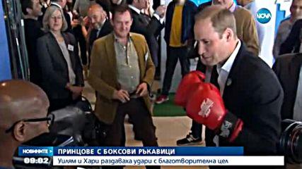 Уилям, Кейт и Хари сложиха боксовите ръкавици