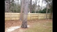 How to properly pressure wash a fence - Tallahassee pressure washing
