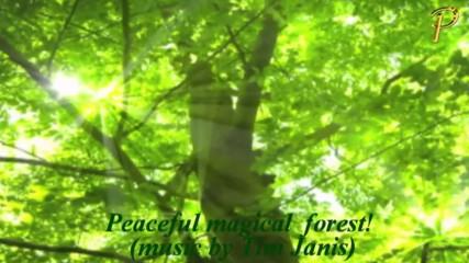 Зелено спокойствие! ... ( Relaxing music -