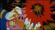 Primer 55 - Pigs