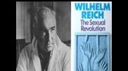 Характерова броня и теория за Оргона ( психоанализата на Вилхелм Райх )