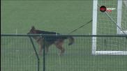 Дербито на Пловдив под зорката охрана на полиция и... кучета