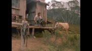 Коне: Обичам Начинът по Който Лъжеш - Horses: Love the Way You Lie