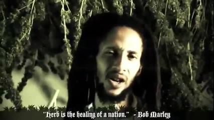 Julian Marley - Boom Draw
