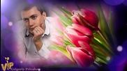 Ион Суручану - Алые тюльпаны