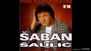 Saban Saulic - Kume brate - (Audio 1998)