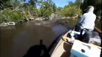 Мъж се изплашва от няколко крокодила