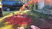 'Dallas Halloween Massacre' front yard likely to scare off this years' trick-or-treaters